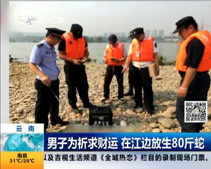 [视频]男子为祈求财运 在江边放生80斤蛇