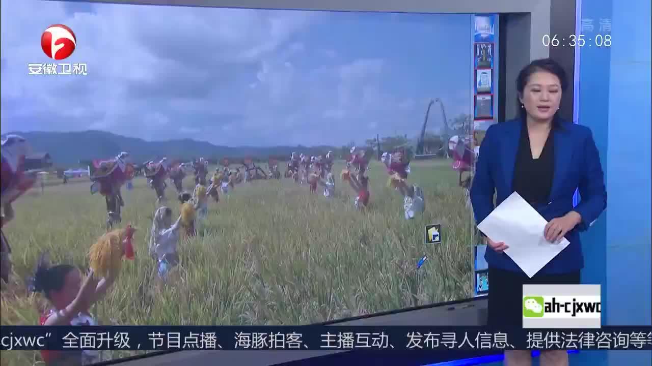 """[视频]湖南杂交水稻研究中心三亚基地 亩单产超千公斤!袁隆平""""水稻仪仗队""""迎丰收"""
