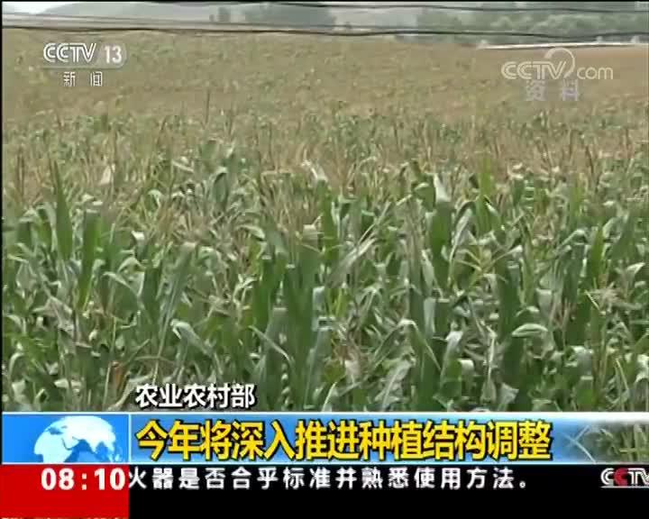 [视频]农业农村部:今年将深入推进种植结构调整 增加紧缺产品供给