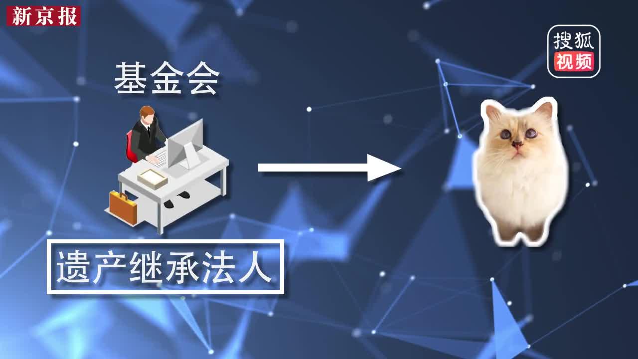"""[视频]作为""""老佛爷""""晚年最重要伴侣 爱猫能否继承其上亿美元遗产?"""