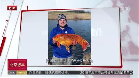 [视频]美国渔夫用饼干钓到9公斤大鱼