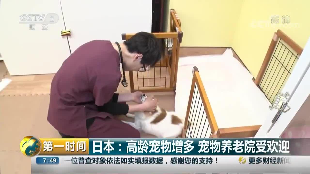 [视频]日本:高龄宠物增多 宠物养老院受欢迎