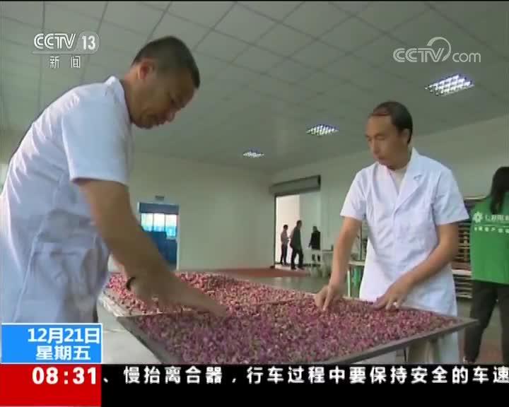 [视频]我国返乡创业农民工达到520万人