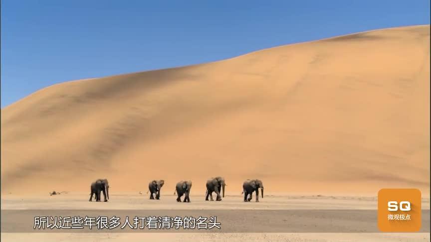 [视频]如何有效的防止小偷进屋盗窃?土豪:把房盖在沙漠里!