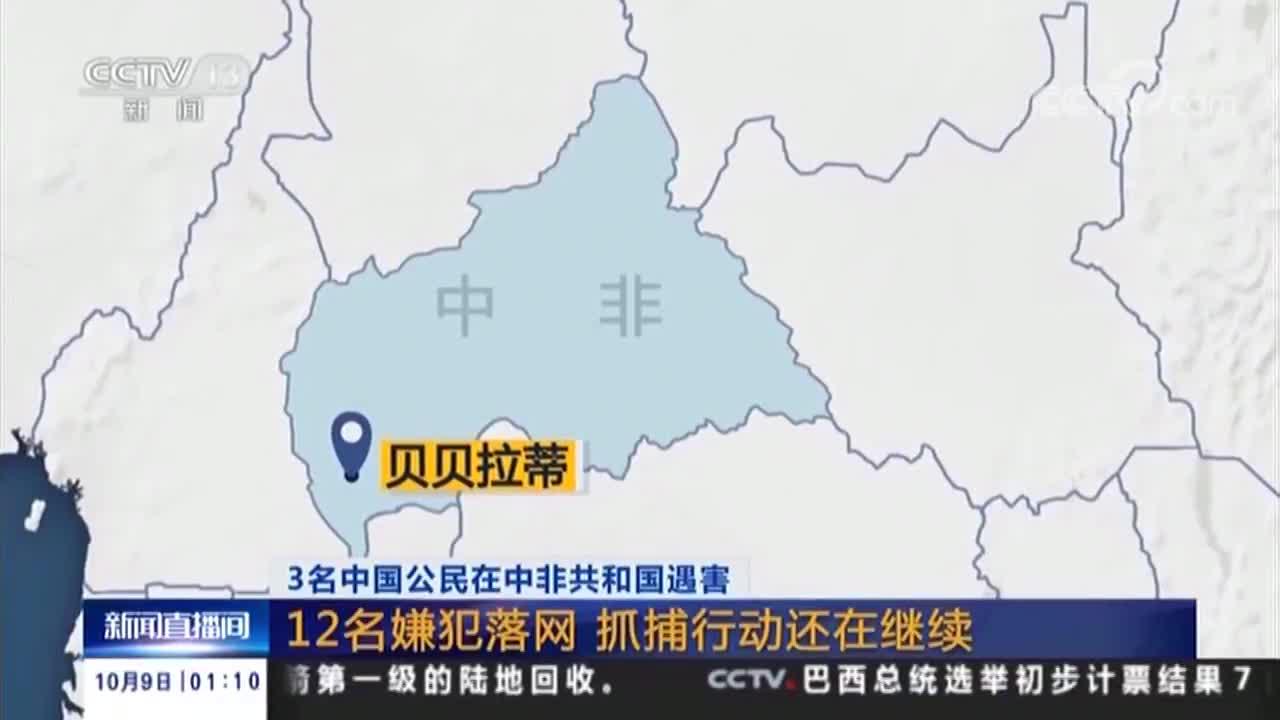 [视频]3名中国公民在中非共和国遇害 12名嫌犯落网 抓捕行动还在继续