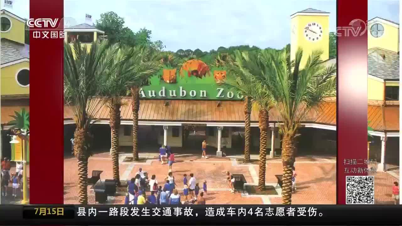 [视频]美国动物园一美洲豹出逃 咬死六只动物