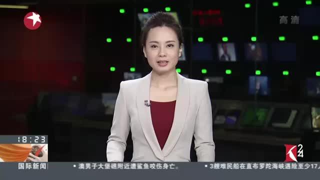 """[视频]""""会飞的汽车""""中国特别纪念版有望明年在华预售"""