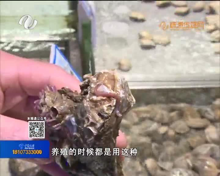 新鲜生蚝到了嘴边 里头钻出两条活虫