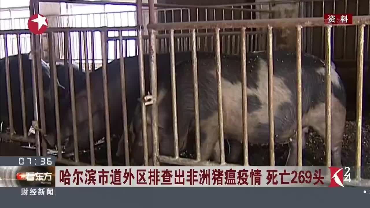 [视频]哈尔滨市道外区排查出非洲猪瘟疫情 死亡269头