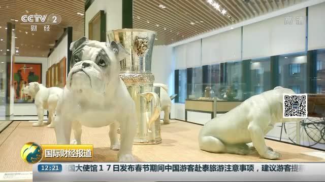 """[视频]OH MY GOD!纽约即将迎来一个""""狗狗博物馆""""!"""