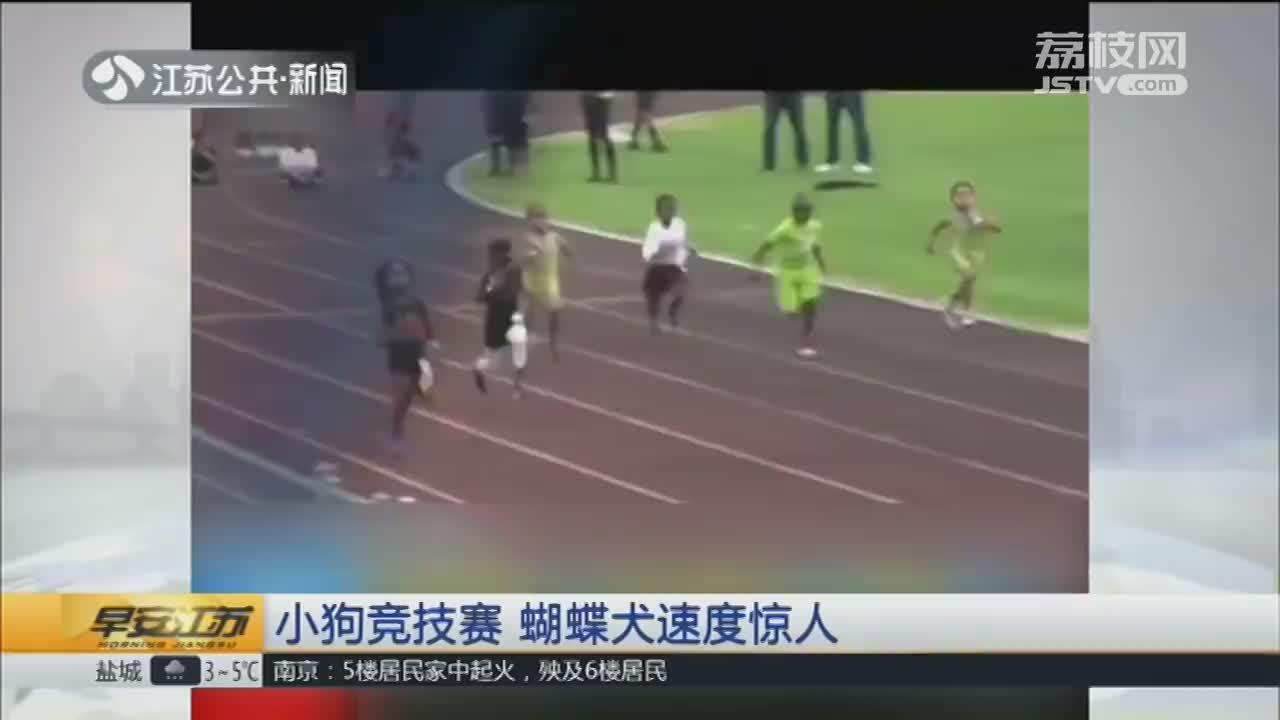 [视频]闪电男孩!百米用时13.48秒