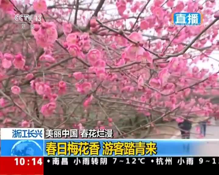 [视频]美丽中国 春花烂漫