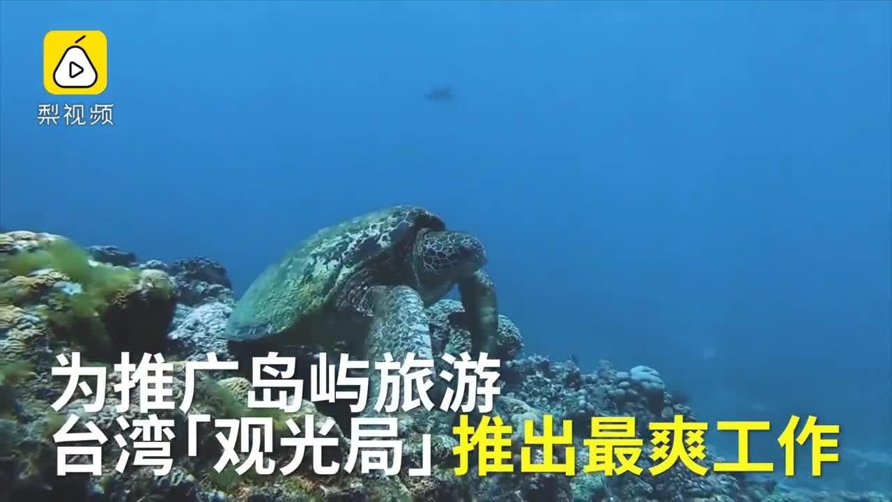 [视频]最爽职位!小岛周薪7500元招岛主