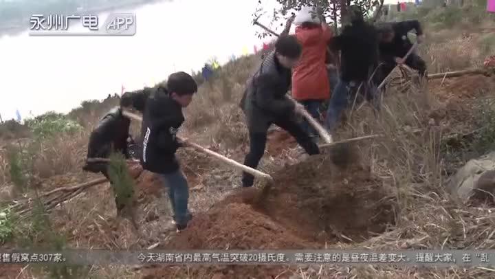 祁阳:栽下一棵树 种下一个梦