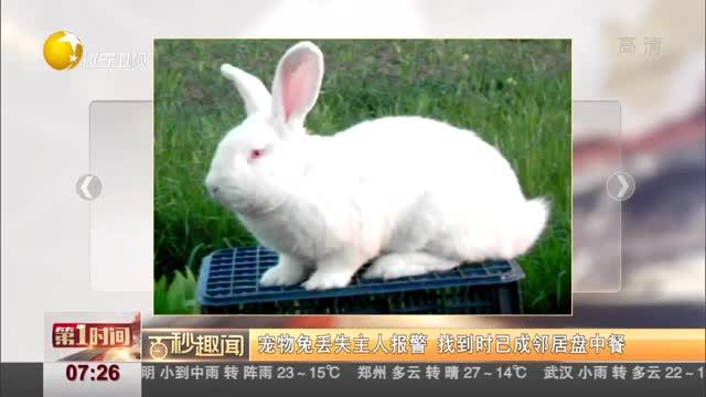 [视频]宠物兔丢失主人报警 找到时已成邻居盘中餐