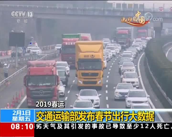 [视频]2019春运 交通运输部发布春节出行大数据
