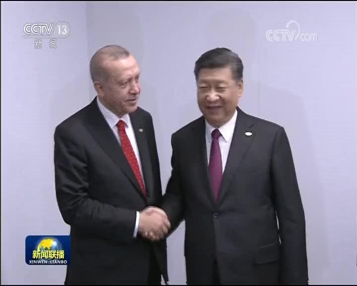 [视频]习近平会见土耳其总统