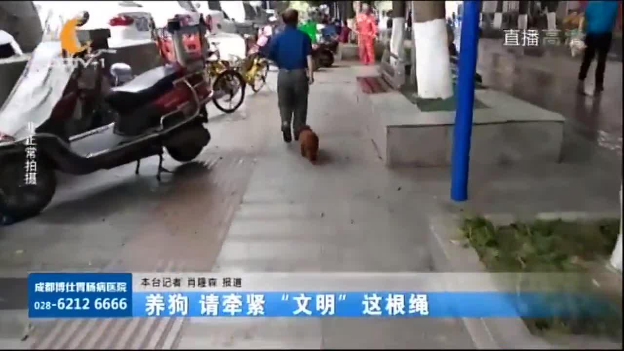 """[视频]养狗 请牵紧""""文明""""这根绳"""