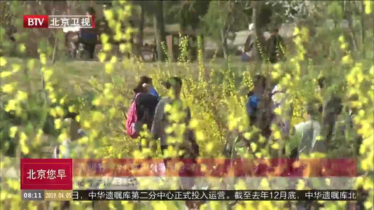 [视频]清明节气到 宜户外运动多食果蔬