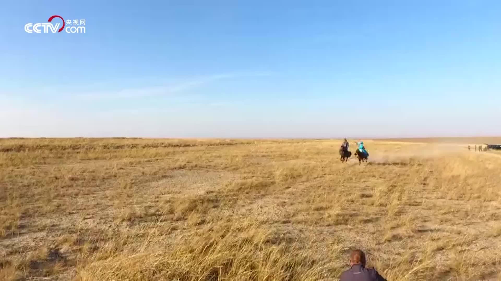 [视频]草原如画,生活如诗!