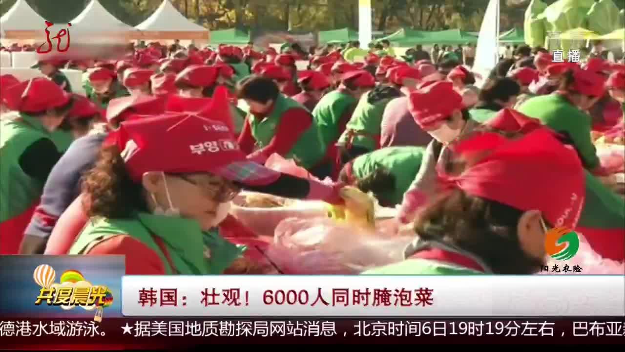 [视频]韩国:壮观!6000人同时腌泡菜