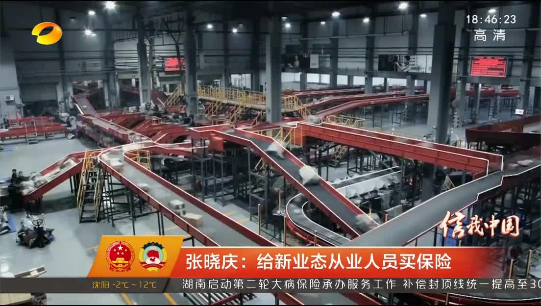 张晓庆:给新业态从业人员买保险