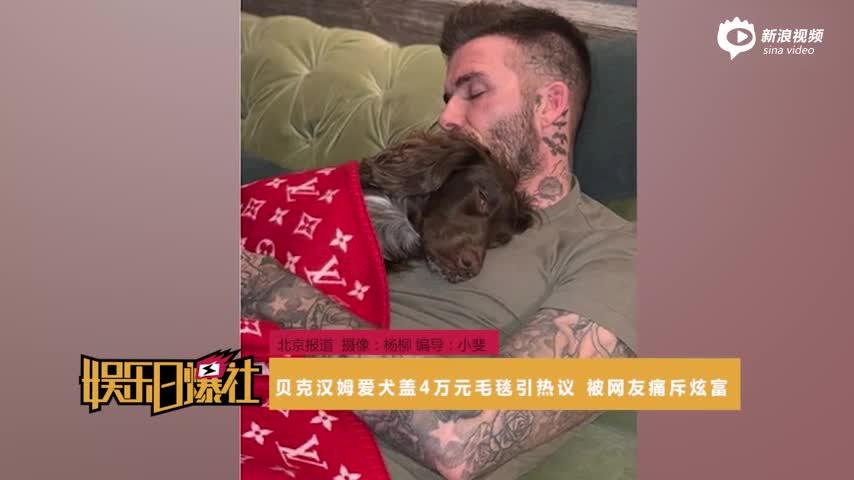 [视频]贝克汉姆爱犬盖4万元毛毯引热议被网友痛斥炫富