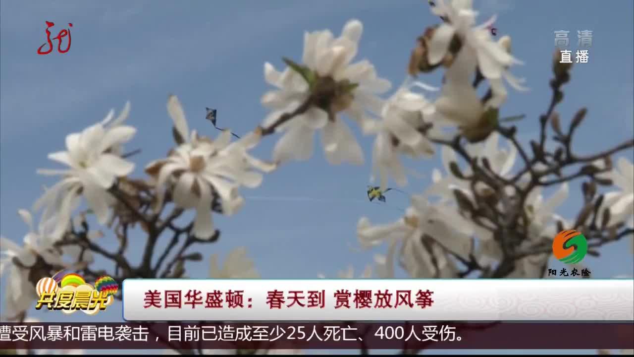 [视频]美国华盛顿:春天到 赏樱放风筝