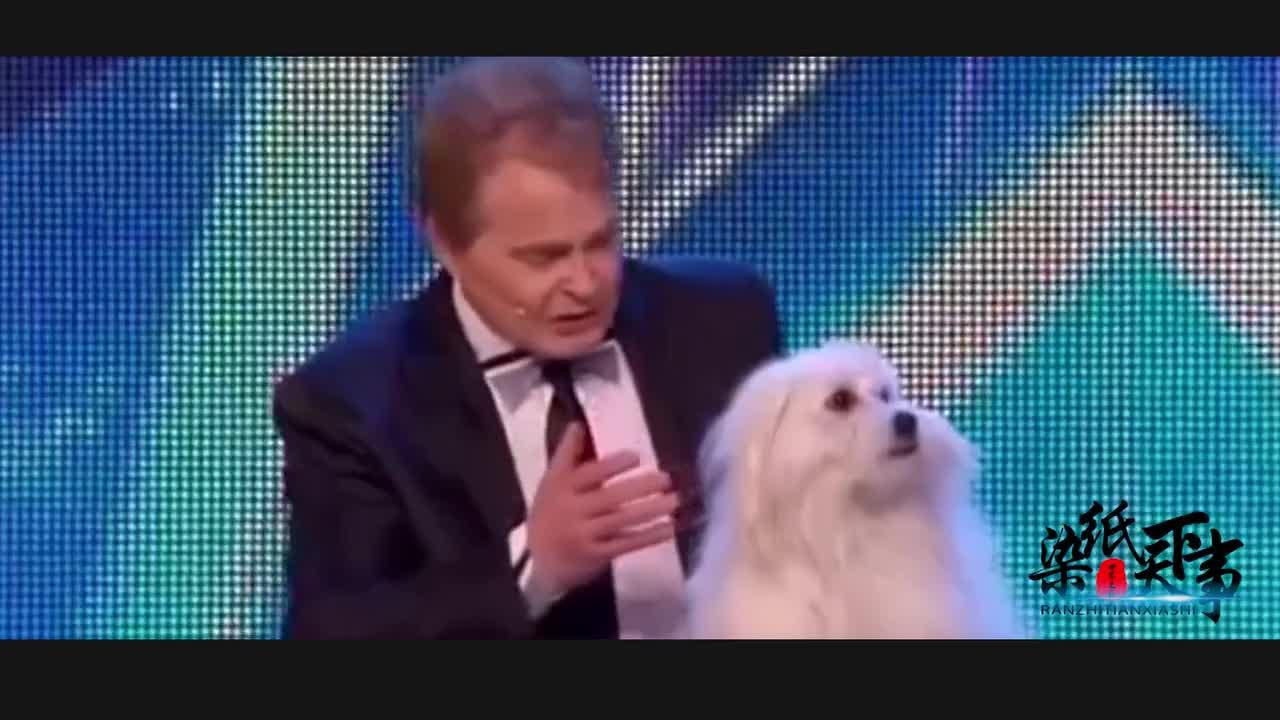 [视频]世界上那些可以开演唱会的狗狗
