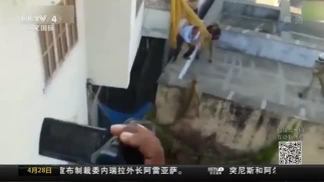 [视频]印度:花豹误闯居民区 警察追捕5小时