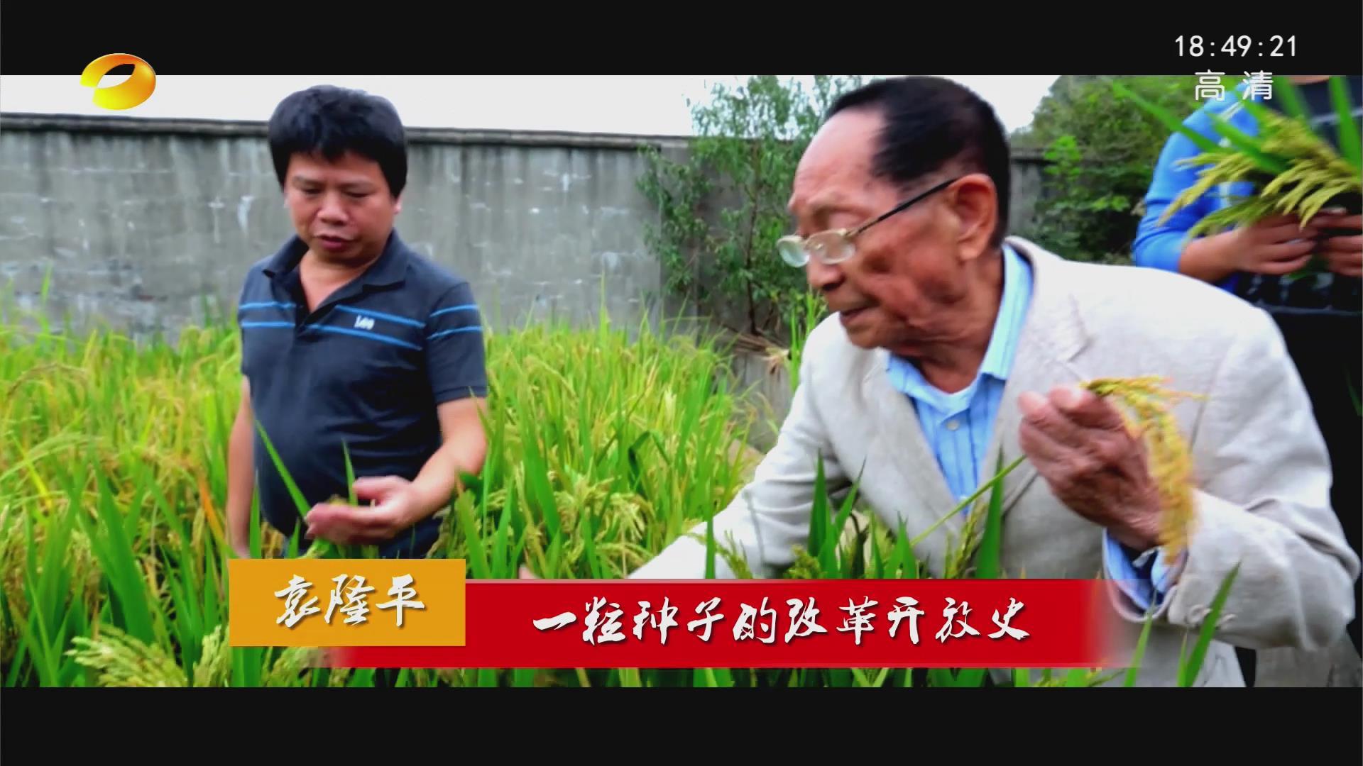 袁隆平:一粒种子的改革开放史
