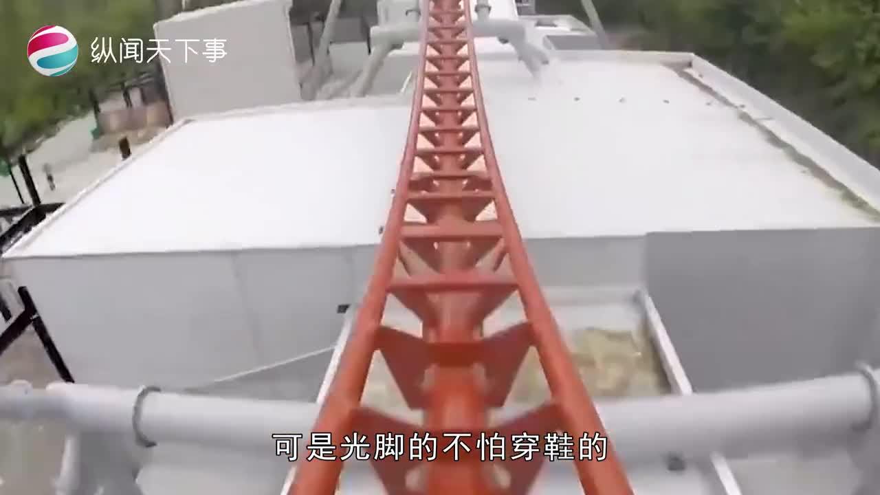 [视频]艺高人胆大!国外牛人踩着轮滑玩过山车 1分钟冲完860米轨
