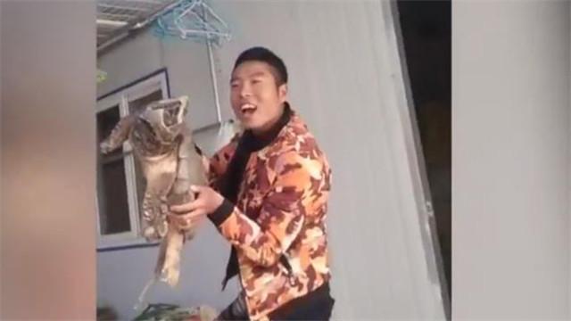 [视频]男子花千元买35斤鳄鱼龟当宠物 林业局:外来物种,建议吃了
